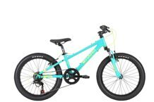 "HARO Flightline 20"" SG Teal/Neon Yellow"
